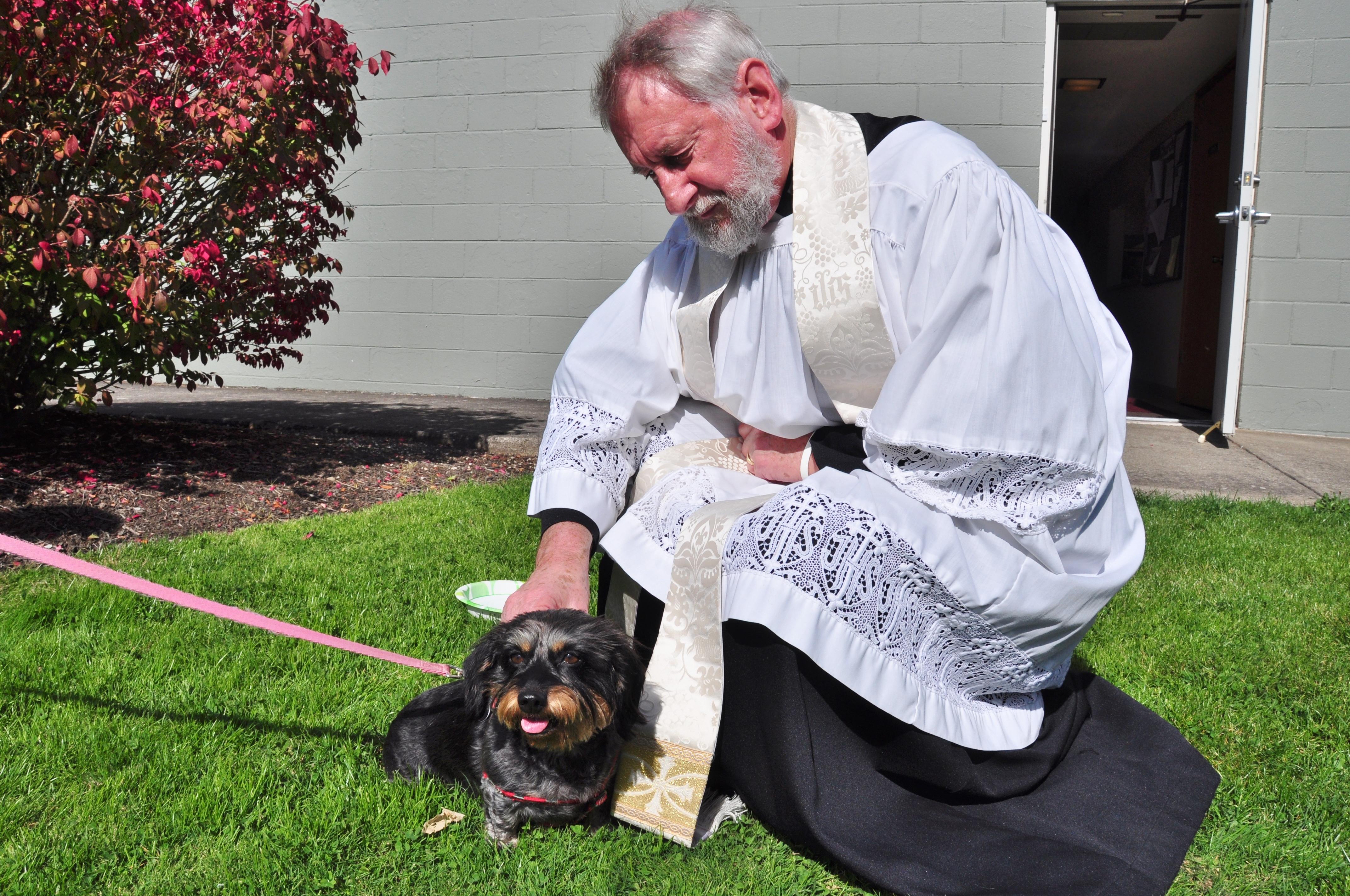 Pet Blessing