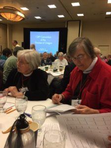 diocesan-convention-4th-november-2016-peggy-and-margaret